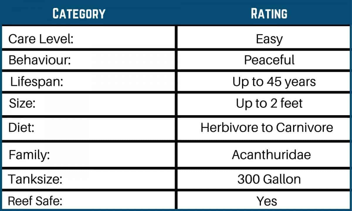 Saltwater Fish Care Charts 10