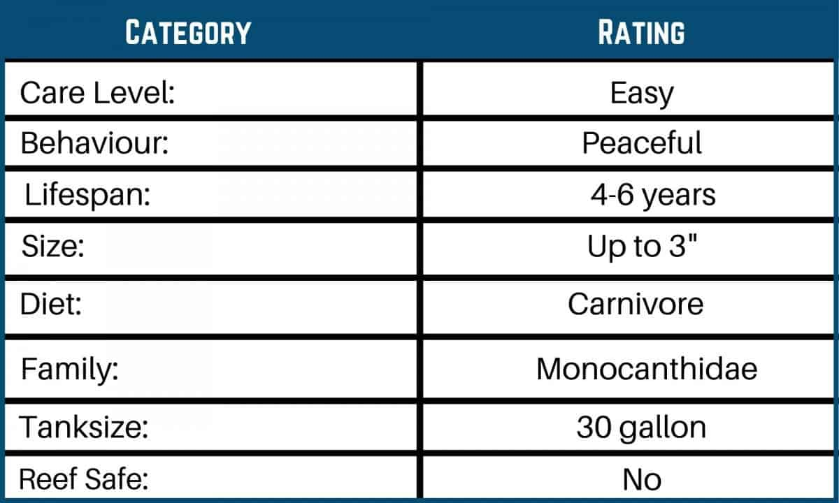 Saltwater Fish Care Charts 6