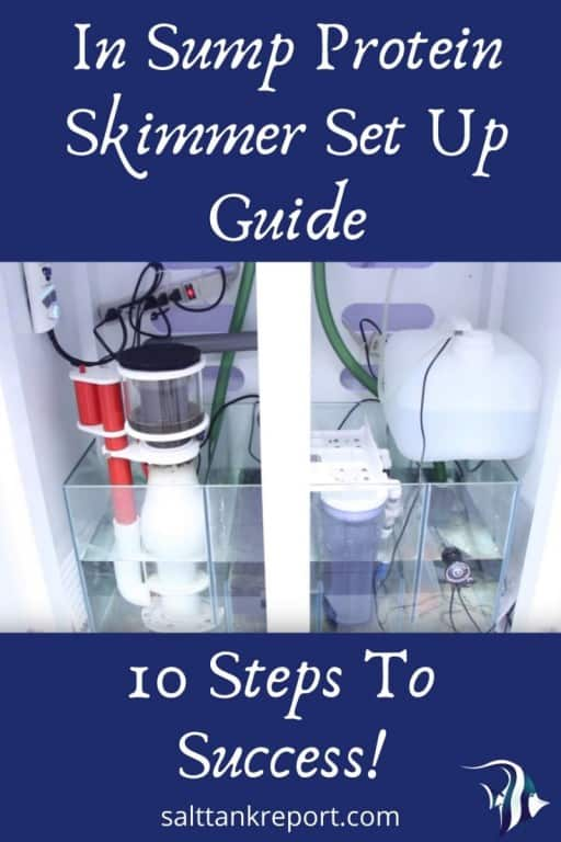 in sump protein skimmer set up guide