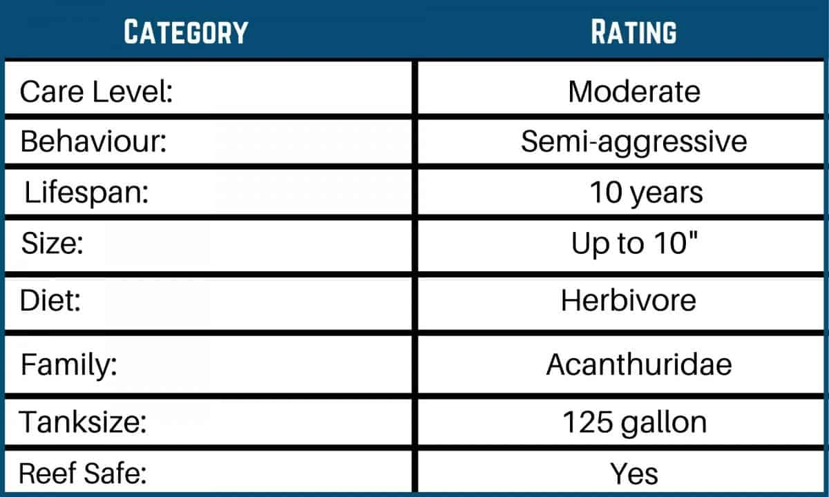 Saltwater Fish Care Charts 14
