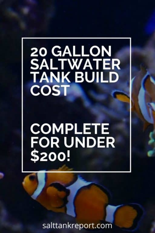 20 gallon saltwater tank build cost