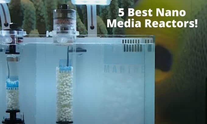 best nano media reactors
