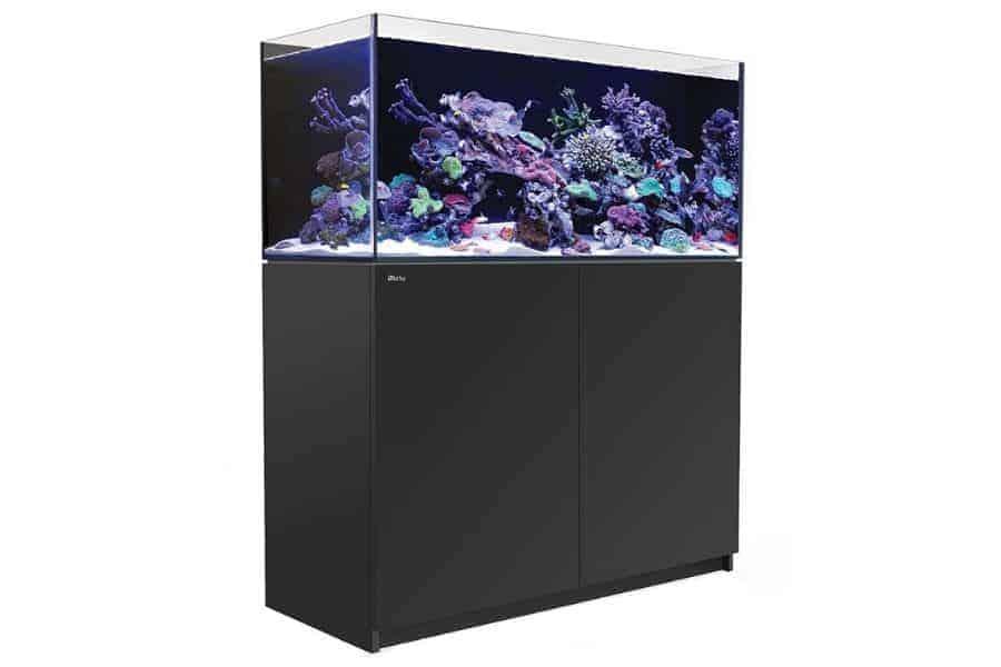 Tanks/Aquariums 4