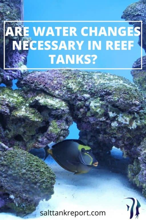 are water changes necessary in reef tanks