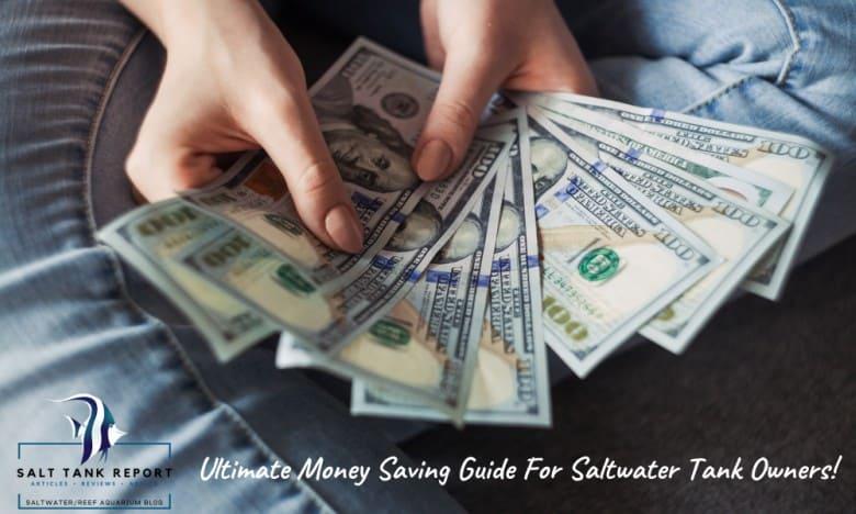 aquarium money saving guide