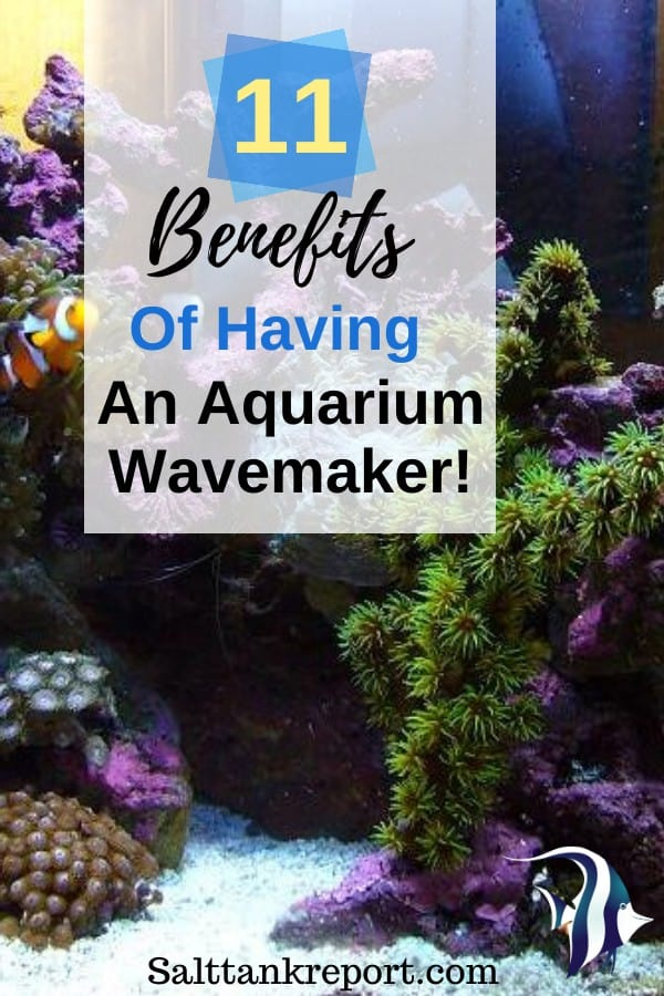 benefits of having an aquarium wavemaker