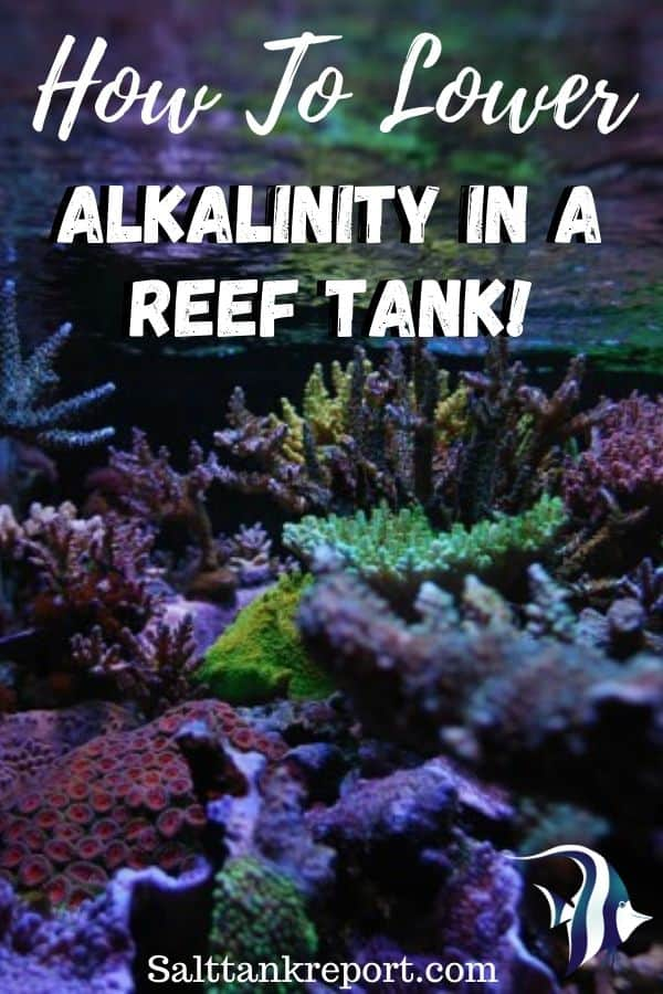 how to lower alkalinity in a reef tank
