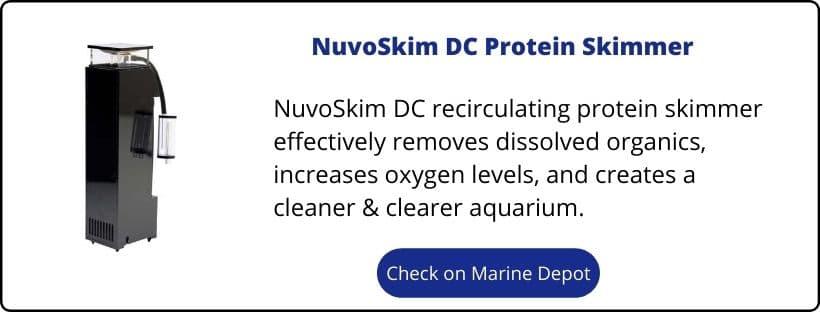 9 Innovative Marine Nuvo Fusion 20 Upgrades 2