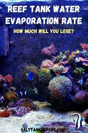 reef tank water evaporation