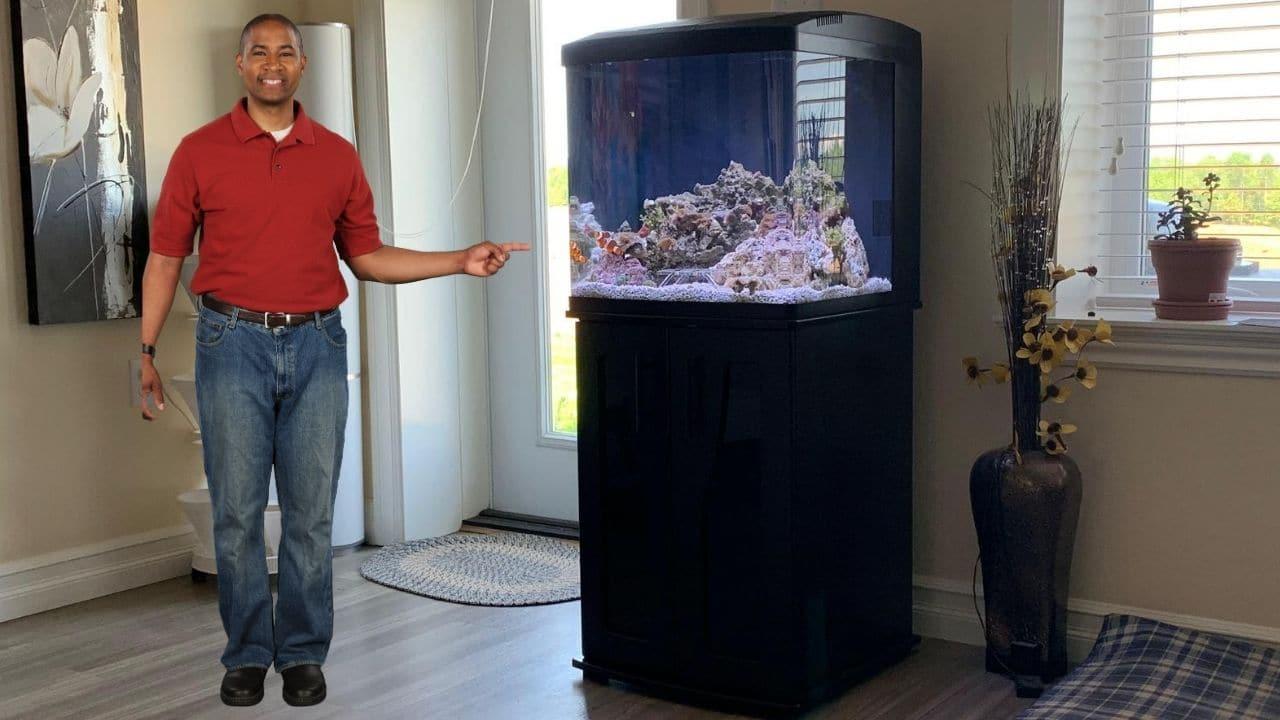 biocube 32 gallon review