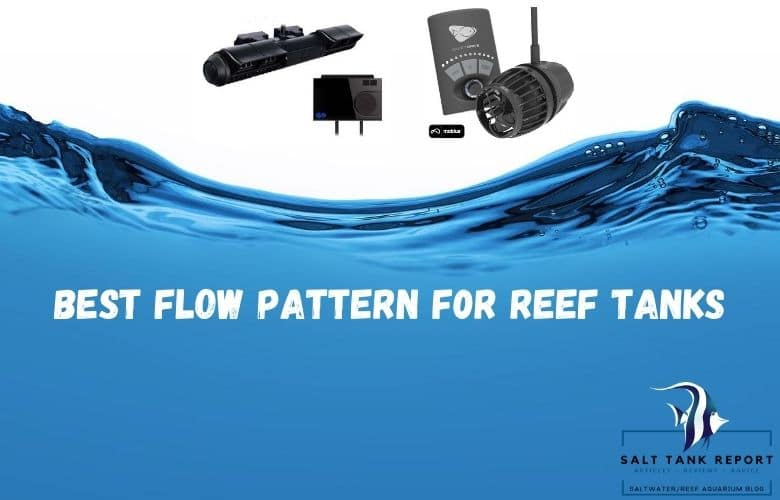 best flow pattern for reef tanks