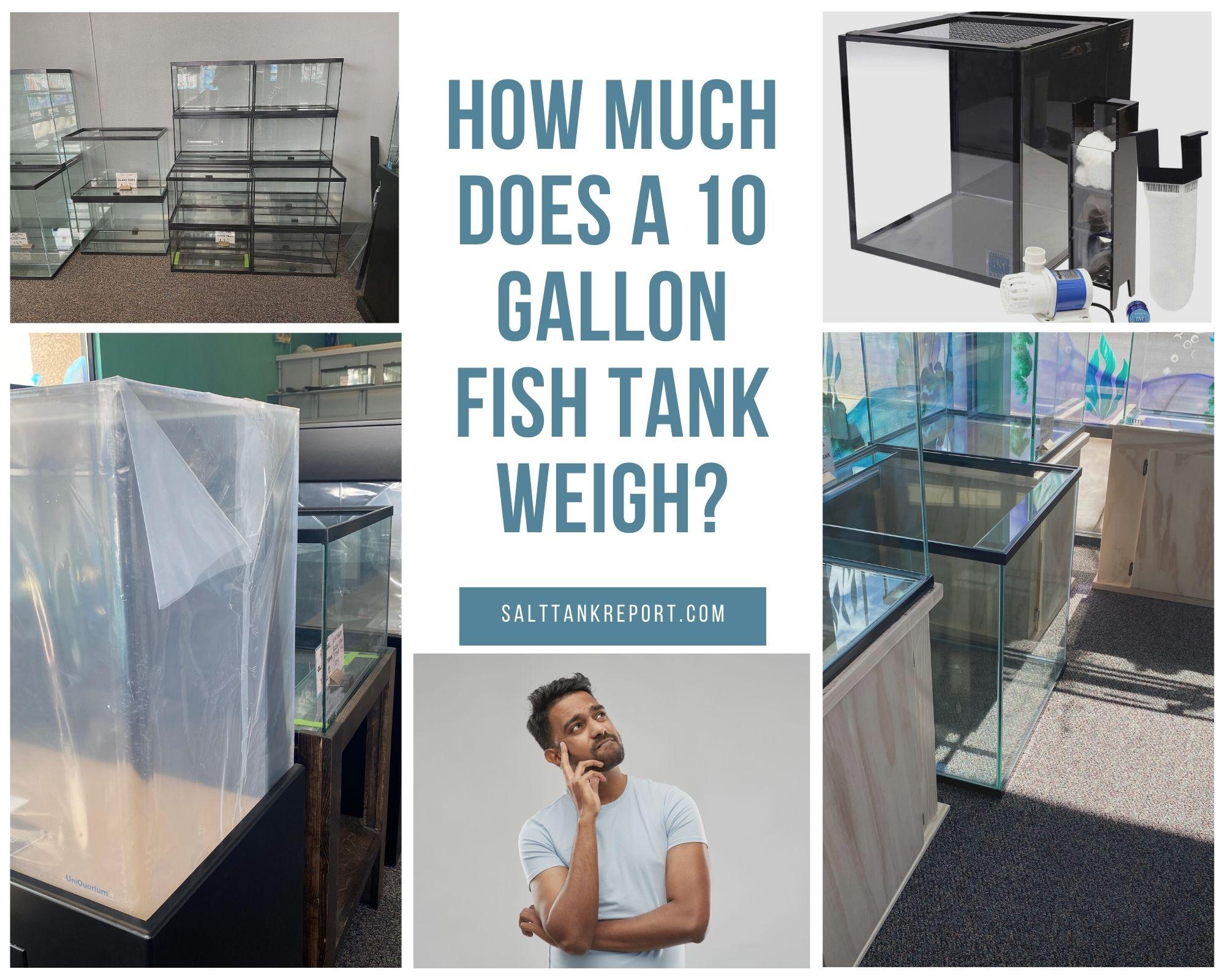 10 gallon aquarium weight