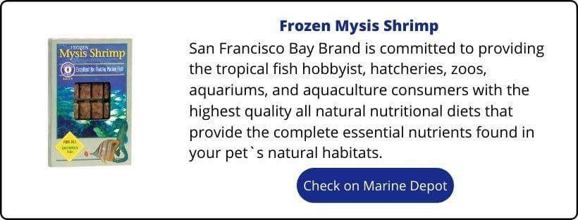 frozen mysis shrimp for clownfish