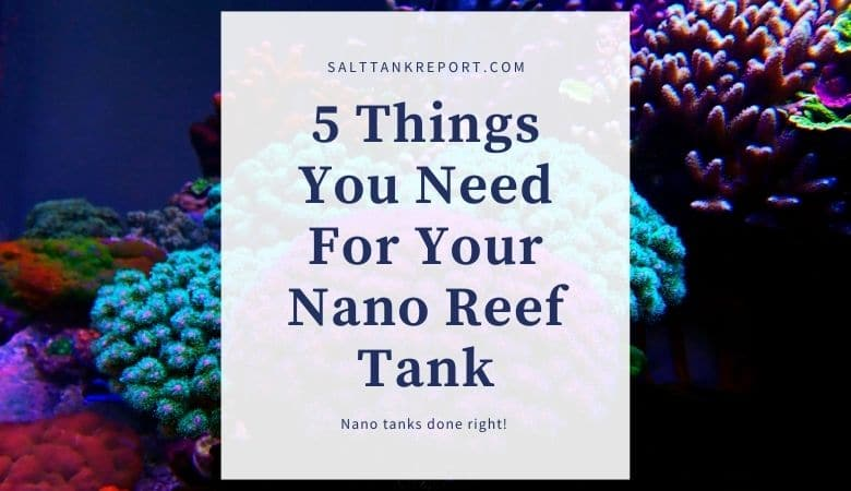 things you need for nano reef tank