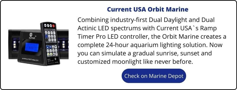 current usa orbit led