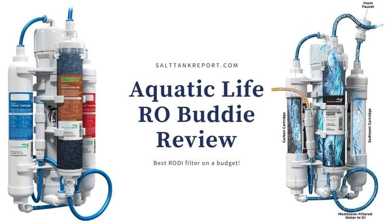 RO Buddie review