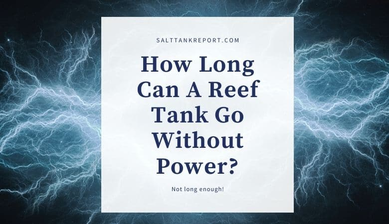 how long can a reef tank go without power