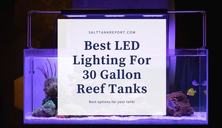best led lighting for 30 gallon reef tanks