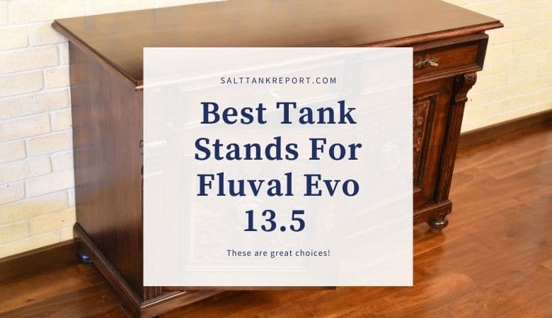 aquarium stands for fluval evo