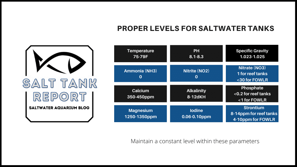 water levels for saltwater tanks