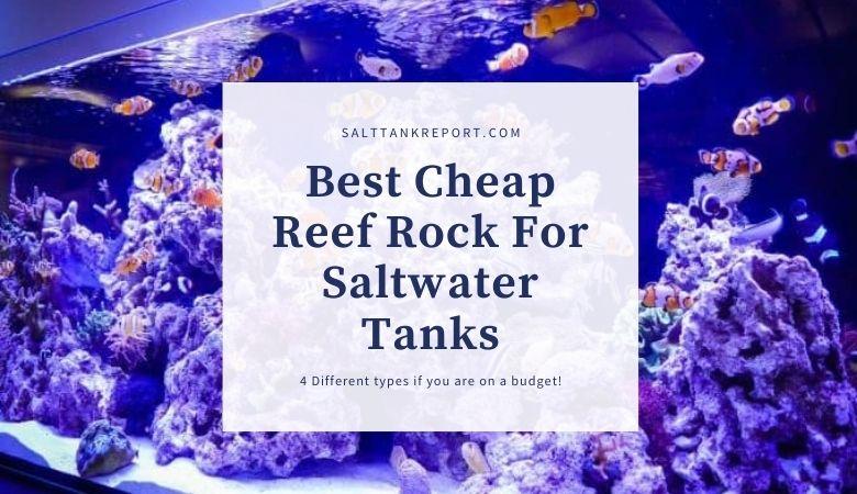 cheap reef rock saltwater tanks